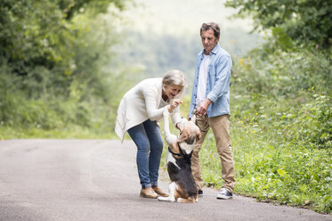 Senior couple with dog in nature - HAPF00875