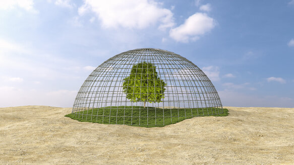 Tree on grass under domed grid - UWF00984