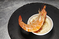 Prawn on bowl with mayonnaise - SCF00480