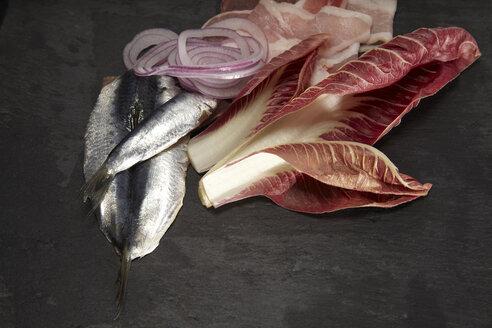 Raw sardine, radicchio, bacon and onion rings - SCF00492