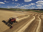 USA, Washington State, Palouse hills, wheat field and combine harvester - BCDF00010