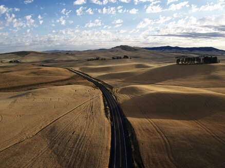 USA, Washington State, Palouse hills, wheat fields during harvesttime - BCDF00013