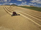 USA, Washington State, Palouse hills, wheat field and combine harvester - BCDF00019