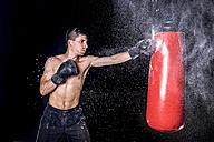 Boxer hitting punch bag - STSF01102