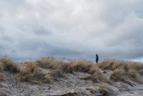 Denmark, Skagen, boy in winter clothes in dunes - MJF02015
