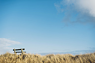 Denmark, Hals, empty bench in dunes at the Baltic Sea - MJF02024
