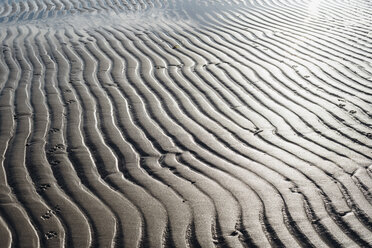 Rippled structure on sandy beach in backlight - MJF02030