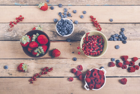 Bowls of different fruits - RTBF00413