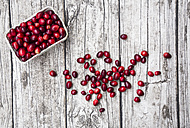 Cranberries in bowl - LVF05371