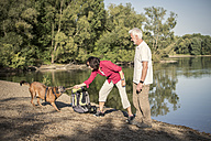 Senior couple with dog at a lake - ONF01025