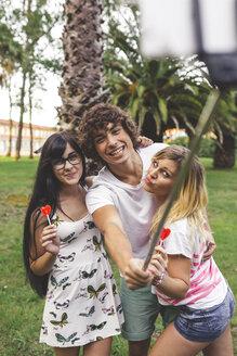 Happy friends in park taking a selfie using selfie stick - DAPF00402