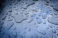 Water drops - HAMF00219
