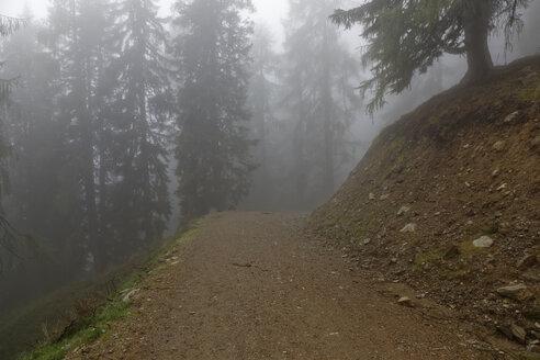Austria, Carinthia, Emberger Alm, trail in fog - GFF00811