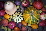 Various colorful vegetables - YFF00578