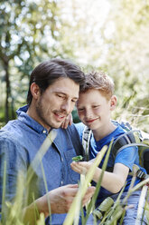 Father showing son a grasshopper - RORF00341