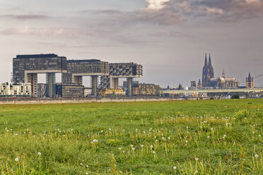 Germany, Cologne, view to Crane Houses at Rhine harbour and Cologne Cathedral in the background - GFF00826