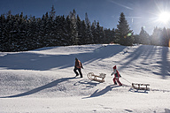 Children pulling their sledges in the snow - HHF05440