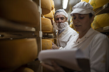 Cheese factory worker controlling maturation of cheese - ZEF11057