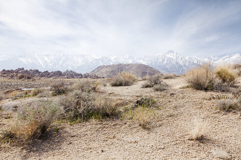 USA, California, steppe with snow-covered mountain in the background - BMAF00242