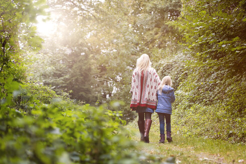 Back view of mother and little daughter walking in autumnal forest - MIDF00813