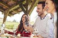 Friends socializing at outdoor table with red wine - ZEDF00376