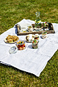Picnic with vegetarian snacks on meadow - EVGF03105