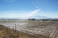 Spain, Logrono, irrigation system - DEGF00937