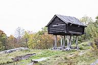 Sweden, Stockholm, historic log cabin on piles in Skansen - ABZ01441