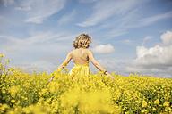 Back view of blond woman wearing yellow dress standing in rape field - ZEF11130