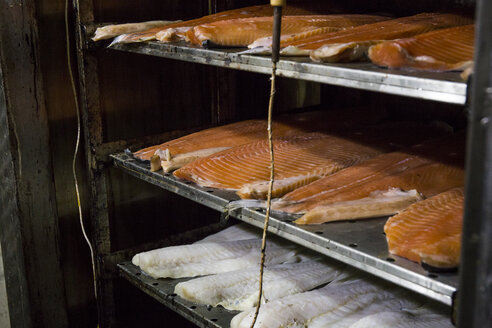 Salmon and other fish getting cured in smoke house - ABZF01454