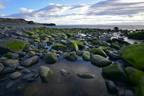 Iceland, coastal landscape in Northern Iceland - FDF00207