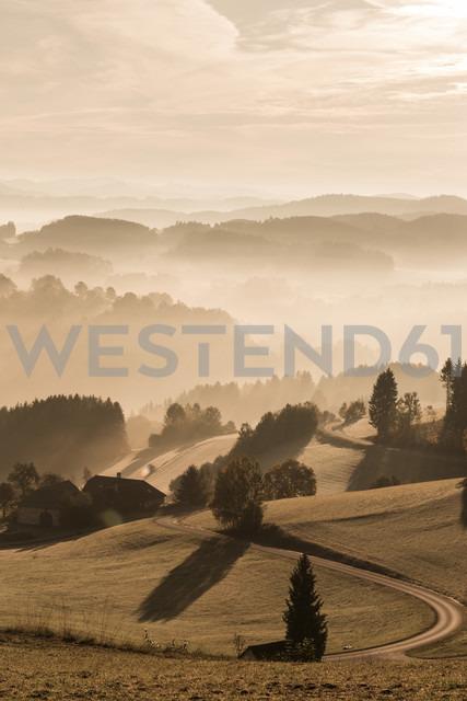 Austria, Muhlviertel, Autumnal landscape at sunrise - FCF01114
