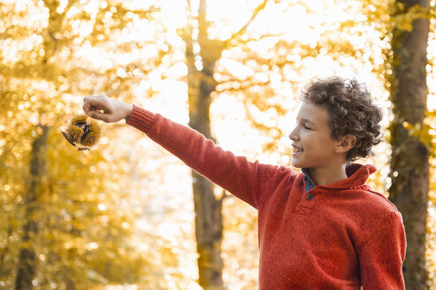 Smiling boy with sweet chestnut in the autumnal forest - DIGF01415