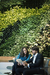 Businessman and woman sitting in front of green plant wall, using digital tablet - WESTF21889