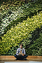 Young man sitting infront of green plant wall, using digital tablet - WESTF21910