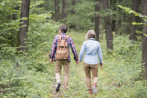 Back view of senior couple walking hand in hand in the woods - HAPF01079