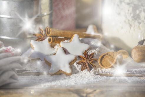 Cinnamon stars, flour, spices and cinnamon powder - ODF01457