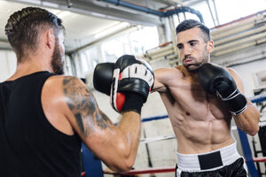 Boxer sparring with coach - MADF01243
