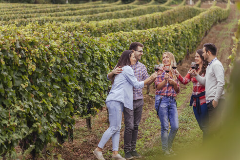 Happy friends in a vineyard - ZEDF00419