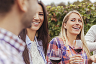 Friends in a vineyard holding glasses of red wine - ZEDF00425