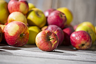 Apples on wood - MAEF12050