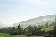 Germany, Baden-Wurttemberg, Foggy hills at the Black Forest - MIDF00815