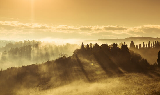 Italy, Tuscany, Val d'Orcia, landscape in morning fog - FCF01144