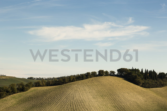 Italy, Tuscany, Val d'Orcia, rolling landscape - FCF01150