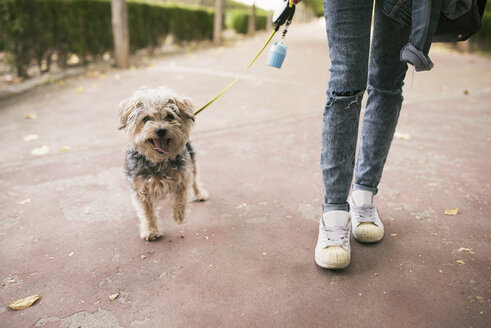 Young woman going walkies with her dog - JASF01302