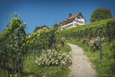 Switzerland, Wittenbach, walkway to Dottenwil Castle - KEB00425