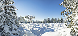 Germany, Thuringia, snow-covered winter forest at morning sunlight - VTF00567