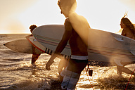 Surfers in the sea at sunset - WESTF22063