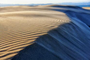 Spain, Tarragona, Ebro Delta, dune - DSGF01173