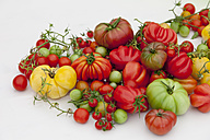Various sorts of tomatoes on white background - CSF27856